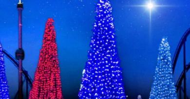 Natal no SeaWorld